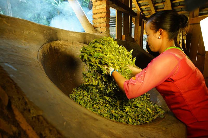西藏茶叶厂家 哪里有供应品质好的茶叶