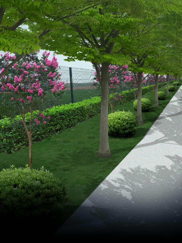 厂区绿化施工,厂区绿化设计,山东厂区绿化