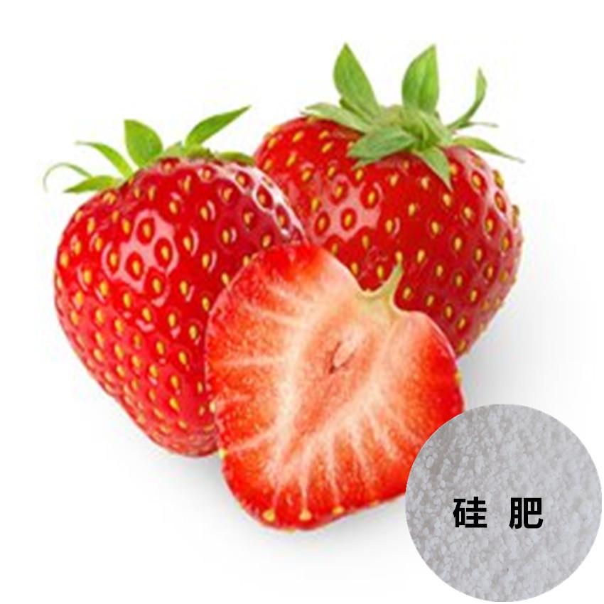 草莓基地专用硅肥@农业用抗病硅肥&硅博士小包装硅肥