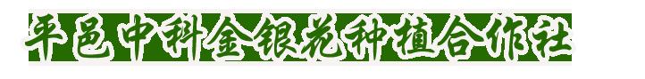 平邑縣中科金銀花種植專業合作社