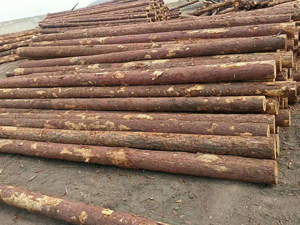 胶合板包装木箱_森旺松木桩专业厂家