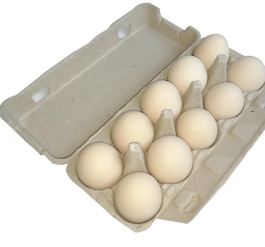 鹽城雞蛋紙托價格|薦_達達包裝口碑好的雞蛋紙托供應