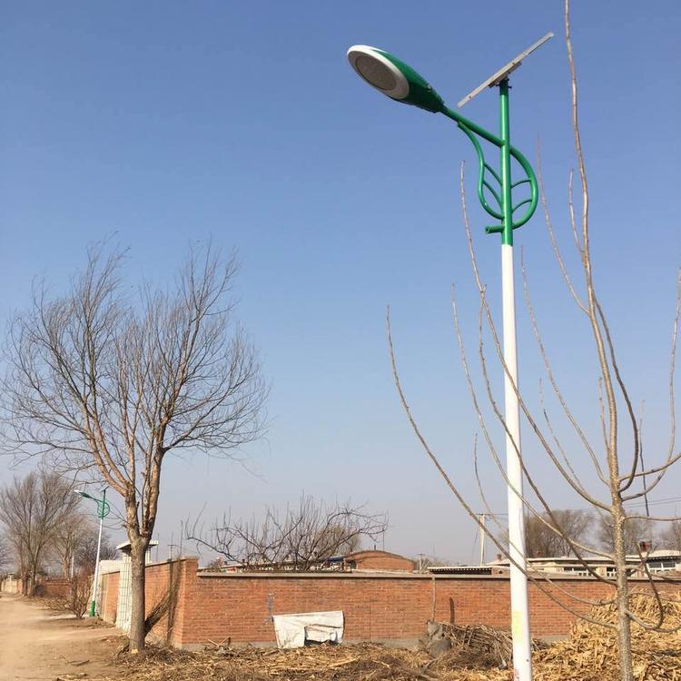 新農村太陽能路燈-不錯的路燈品牌推薦