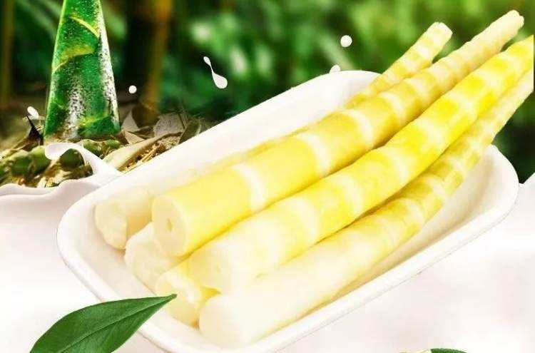 贵州新品草角山野生方竹笋供应|遵义竹笋