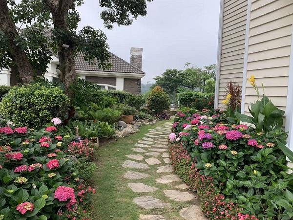 福州花園施工工程|福建可靠的花園設計推薦