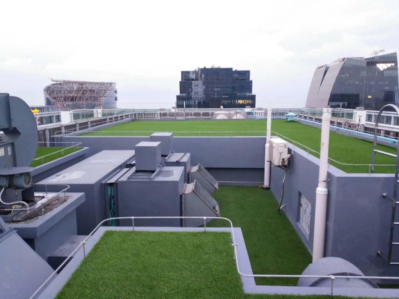 翔安區仿真足球場草皮公司|供應福建優良的仿真草坪