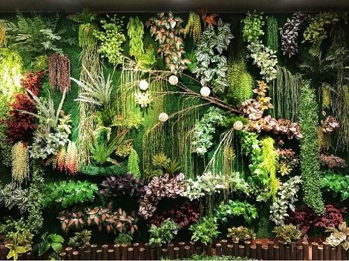 植物墻采購-供應福建實惠的植物墻