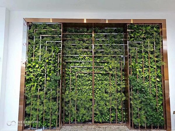 福建垂直綠化報價_提供實力可靠的垂直綠化