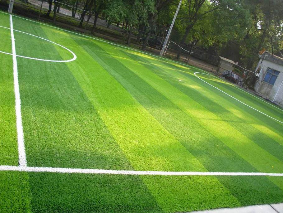 青海人造草坪价格-青海泽澳文体设施工程销量好的青海人造草坪出售