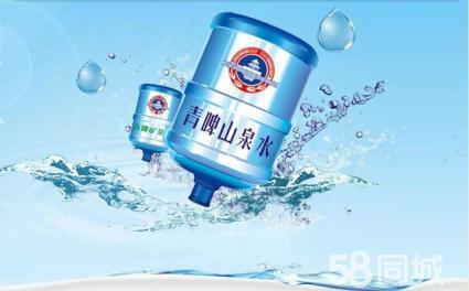 胶南青啤山泉桶装水-山东有保障的青岛市青啤山泉水配送