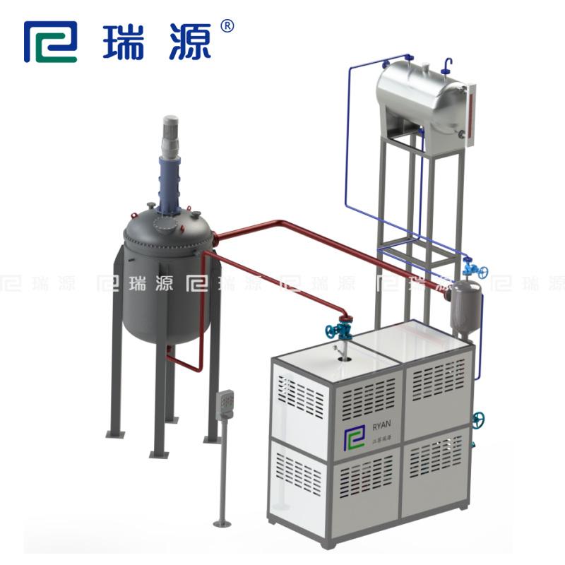 江苏瑞源厂家定制控温反应釜加热导热油加热器
