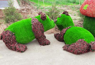 青岛市绿雕生产-质量好的绿雕哪里买