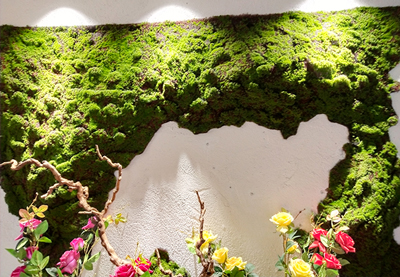 臨沂仿真植物-供應宿遷銷量好的仿真植物