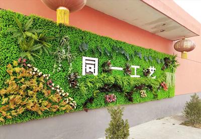 相山区仿真植物生产-供应宿迁专业的仿真植物