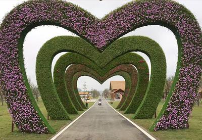 植物綠雕公司-江蘇哪里有供應品質保證的植物綠雕