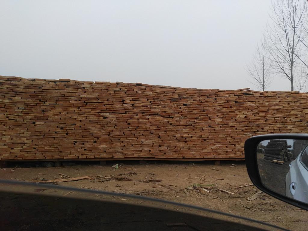 杨木板材信息-漯河划算的白杨木板材出售