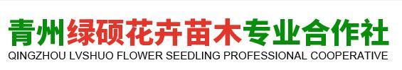 青州绿硕花卉苗木专业合作社
