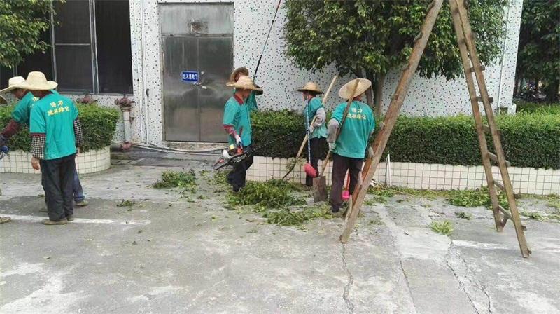 肇慶園林綠化公司