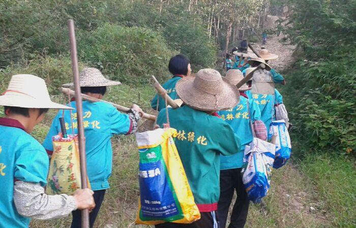 营造林工程公司_找专业的旅游观景养护服务就到绿源景观
