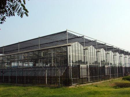 售楼处温室建设
