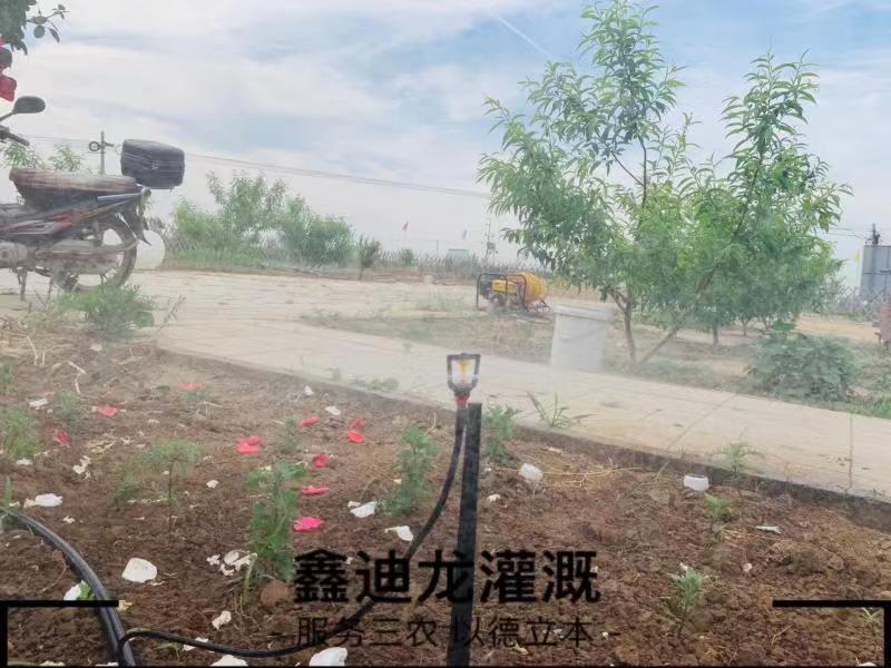 河北温室大棚微喷头厂家鑫迪龙灌溉