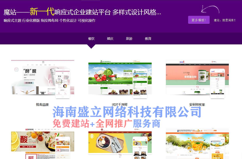 寻找海南网站建设_专业可靠的海南网络推广服务商_海南盛立网络科技