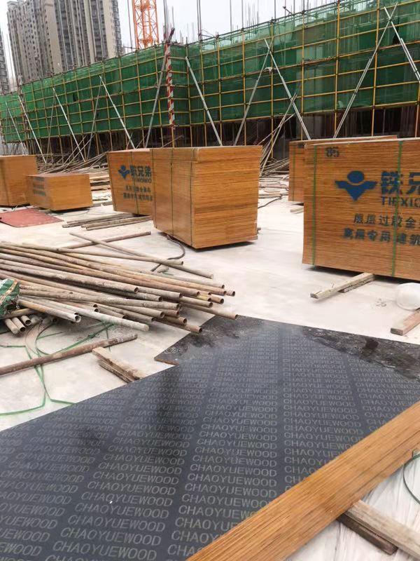 寧波建筑模板生產廠家,在哪能買到價格合理的覆膜建筑模板呢