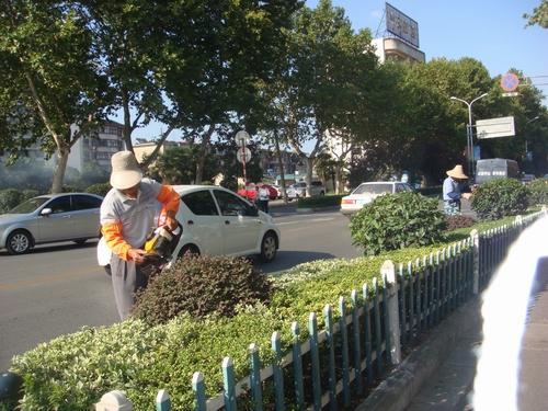甘肅實力強專業垃圾清運服務,城市綠化保潔,物業保潔服務托管