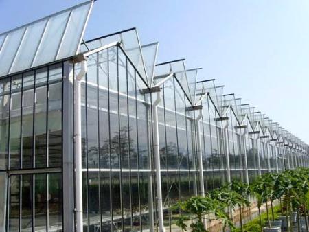 黑河智能大棚廠家-來遼寧新澤,買超值的智能大棚