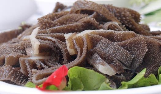 种类多样的牛柏叶-广东报价合理的牛筋丸供应