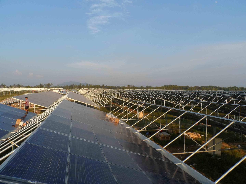山东实用的光伏发电温室