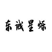 沈陽東誠星爍光電科技有限公司