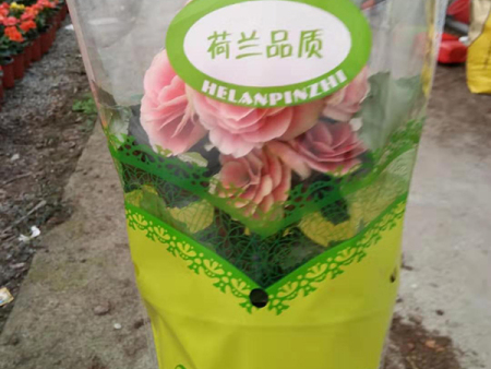 花卉梯形塑料包装袋供应商-无纺布梯形袋加工