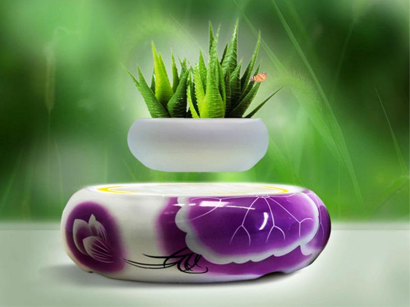 磁悬浮陶瓷盆栽