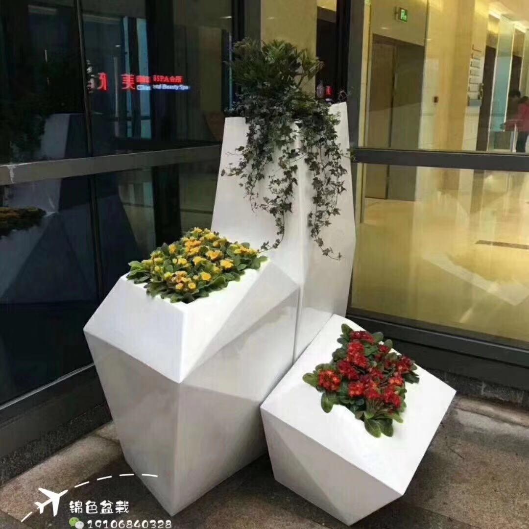 园林公司动态-杭州口碑好的绿植租赁哪里有