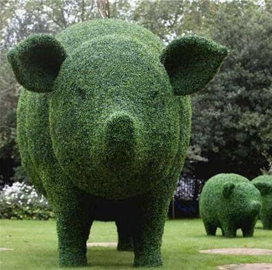泗洪縣綠雕-哪里可以買到優良的綠雕