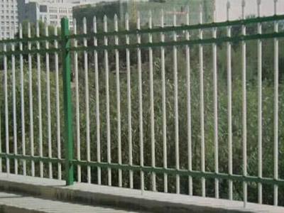 甘肃球场护栏网生产厂家 信誉好的锌钢护栏网提供商,当选兰州伟兵丝网