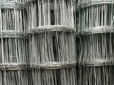 甘肃养鸡专用网生产厂家_诚心为您推荐兰州地区质量好的草原围栏网