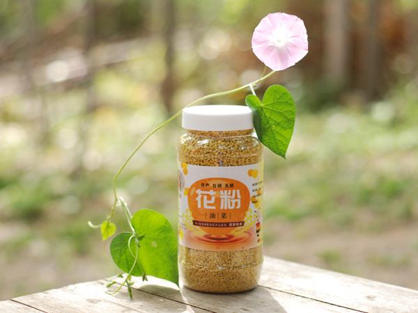 青州蜂花粉-潍坊供应不求的蜂花粉批售