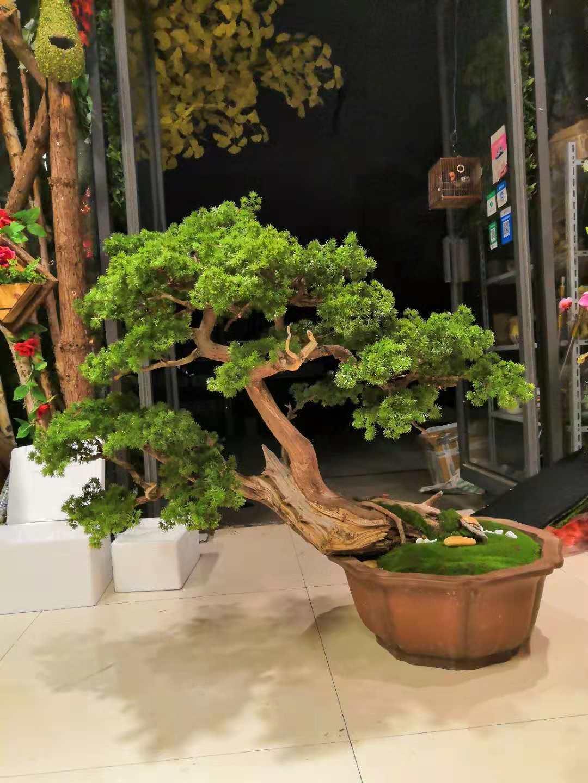 合肥仿真榕树厂家|花之都,您值得信赖的合肥仿真植物批发供应商