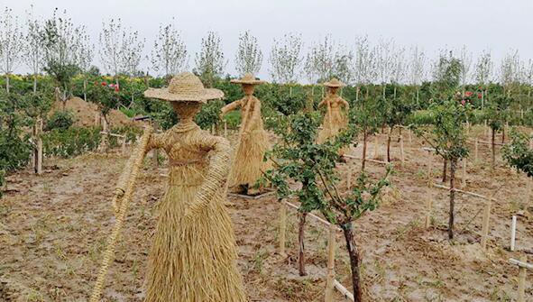 牡丹區草雕生產公司-哪兒能買到好的草雕