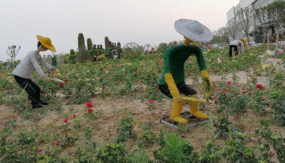 济南市草雕厂家|精美的草雕在哪里买