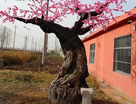 常州仿真樹訂做-供應宿遷特色的仿真樹