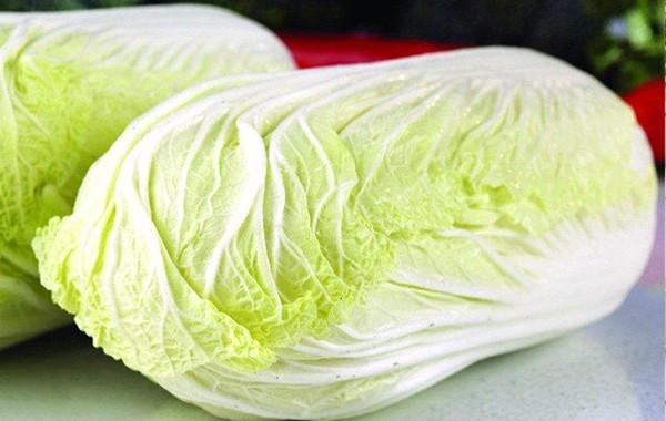 天津蔬菜配送_上哪找經驗豐富的蔬菜配送