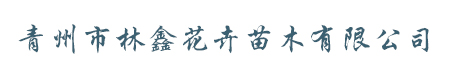 青州市林鑫花卉苗木有限公司