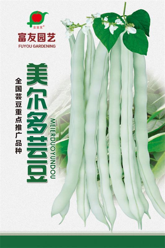 蔬菜种子批发零售选择金富友|价格合理!值得信赖!