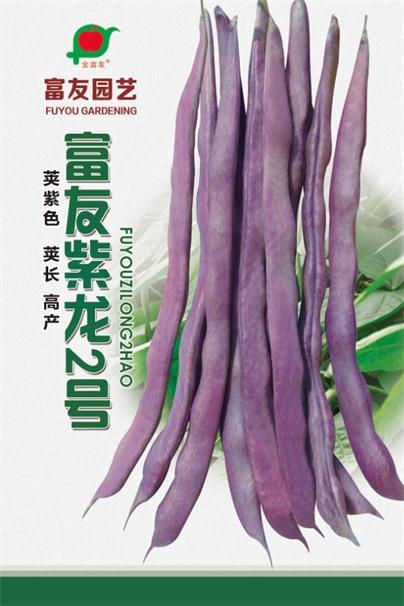 伊春蔬菜种子价格-蔬菜种子批发市场