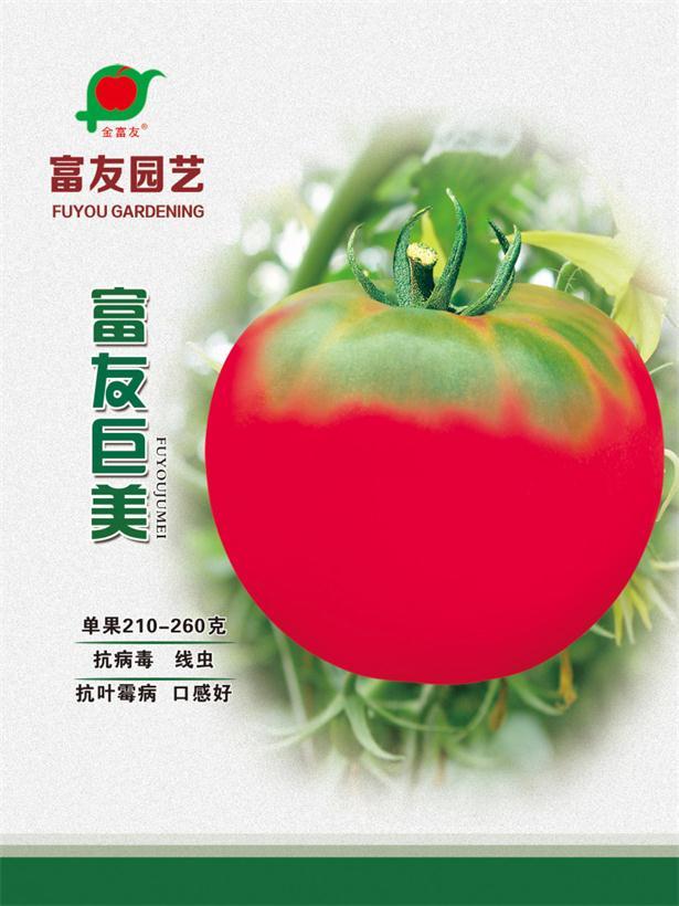 吉林蔬菜种子-黑龙江蔬菜种子|大庆蔬菜种子