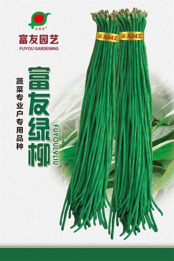黑龙江架豆王种子厂家|吉林水果种子零售|长春水果种子零售
