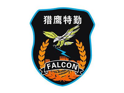 河南猎鹰特勤保安服务有限公司